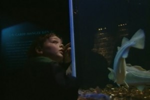 Int #140-France-Nausicaa-child