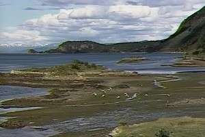 Int #39 Tierra del Fuego