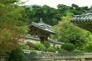 Int 48 - Korea 2