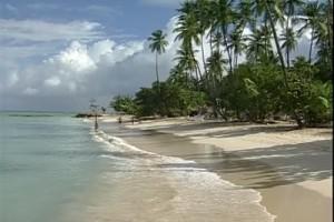 Int 49 - Carib - Tobago 2