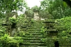 Int 56 Tikal 3