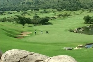 Int #91 - South Africa - golf